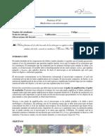 Guía 1 - Mediciones Microscopio UPTC-Enf