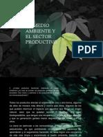 El Medio Ambiente y El Sector Productivo