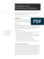 Window of Tolerance and Mindfulness