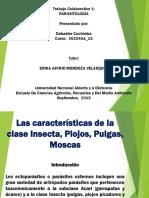 Parasitologia Colaborativo 1 Dubadier