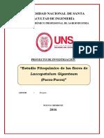 Proyecto de Investigación Introducción a La Agroindustria (1)