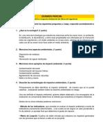 Examen Parcial_GEIAO (1)