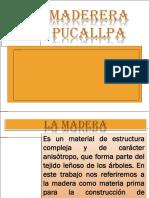 Diapositivas de Maderas