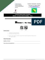 Modulo 1 Ying-Yang