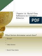 Chapter 14-Social Class
