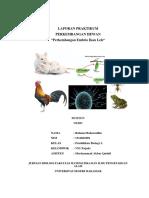 Perkembangan Embrio Ikan Lele-1.docx
