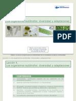 Presentacion Leccion 04 (1)