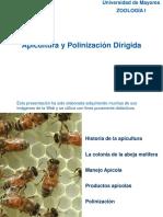 Apicultura y Polinizacion Dirigida