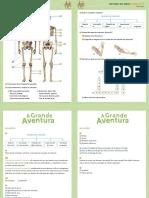 Fichas de EM.pdf