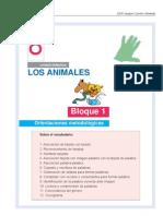 animales_bloque1-8