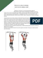 Muscle Up Anelli vs Sbarra