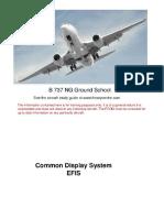 B737NG EFIS