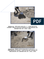 P.F.  MIRADOR.pdf