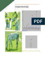 A base da espectrometria de massas.pdf