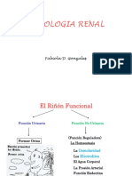 fisiologia-renal4873