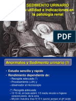 4.-Sedimento-urinario