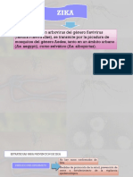 enfermedades mexatenicas y zoonoticas.pptx