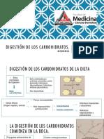 Bioquimica digestion