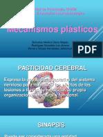 Mecanismos Plásticos