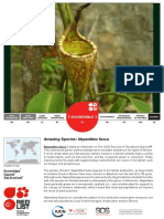 Nepenthes Fusca Updated2015