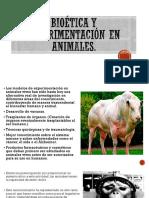 Bioética y Experimentación en Animales