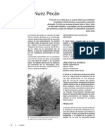 nuezpecan.pdf