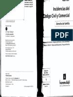 Incidencias del Codigo Civil y Comercial Azpiri en D° Flia