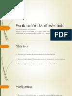 Evaluación Morfosintaxis