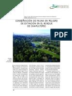 Conservación de Fauna en Peligro de Extinción Bosque Chapultepec