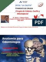 teoriacavidadoral-110623002341-phpapp01.pdf