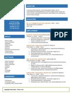 Resume Template (2)