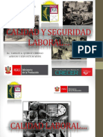 CALIDAD Y SEGURIDAD LABORAL.pptx