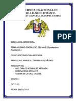 Monografia de Spodoptera Frugiperda