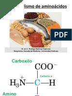 aminoacidos-111102224951-phpapp02