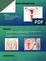 Final Can Endometrial