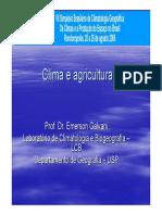 Minicurso_Emerson_Galvani.pdf
