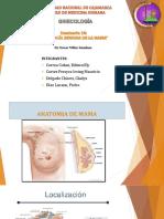 Seminario 10 Patologia Benigan de Mama (1)