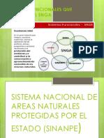 Sistemas Funcionales Que Integran la SNGA