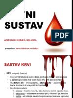 krvnisustav-140125170814-phpapp02