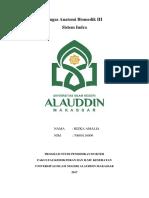 tugas sistem indra - dr.endy.docx