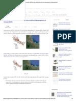 Cara Konversi SHP Ke KML KMZ Di ArcGIS Dan Menampilkan Di Google Earth