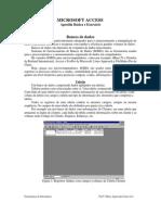Apostila manual básica e exercício microsoft access