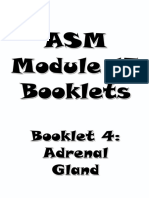 4- Adrenal Booklet.pdf