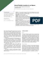 Management of Bilateral Patellar Luxation in an Alpaca