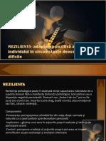 REZILIENTA.prejmer