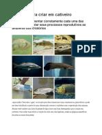 8 Peixes Para Criar Em Cativeiro