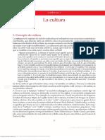 Culturas y Est Ticas Contempor Neas