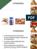 Vitaminas ppx