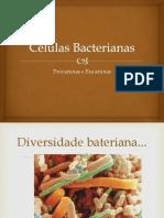 Células Bacterianas