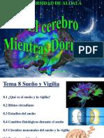 Sueno_y_vigilia.pdf